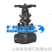 进口不锈钢承插焊闸阀-美国富兰克