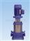 立式多级热水离心泵