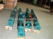 供应200QJ20-270/20上海深井泵厂 深井泵型号 长轴深井泵