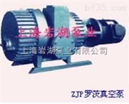 ZJP型羅茨式真空泵