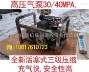GY-25-30MPA高壓氣泵,小型高壓氣泵 電動氣泵 汽車充氣泵