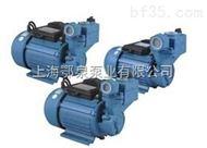 WZB型漩涡式自吸电泵
