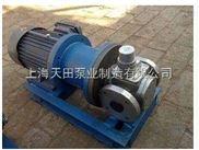 高温磁力齿轮泵