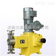 J-X柱塞计量泵