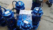 高揚程潛污泵 揚程高的污泥泵 污水糞尿用排污泵