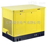 靜音液化氣發電機YT15REG