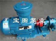 優質寶圖品牌羅茨齒輪泵.熱熔膠泵.硬齒面渣油泵