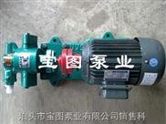 寶圖名牌小型磁力泵.齒輪泵型號.導熱油泵