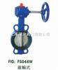 FS044W渦輪式鑄鐵蝶閥